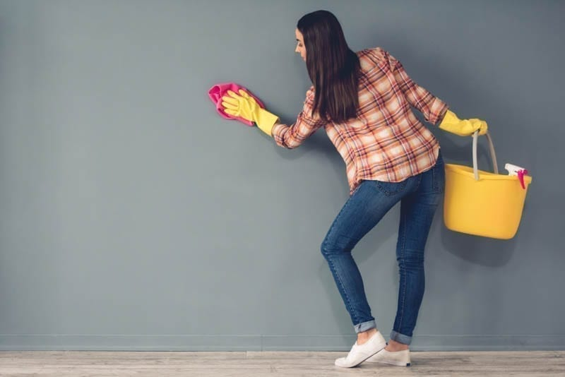 Painted Walls and How to Clean Them