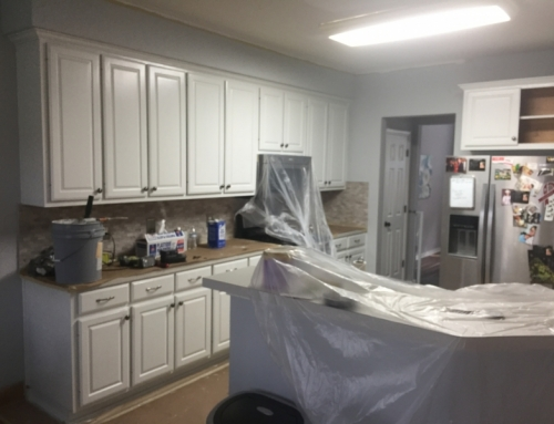 Kitchen Cabinet Repaint