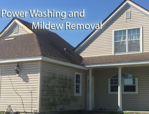 Power Washing and Mildew Removal