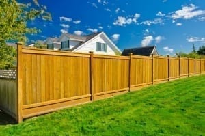Fence stain color choice