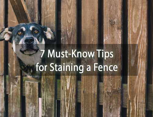 7 Must-Know Tips for Staining a Fence