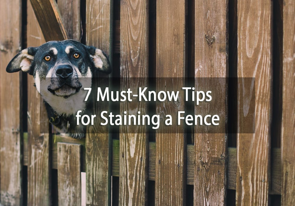 7 Must Know Tips For Staining A Fence