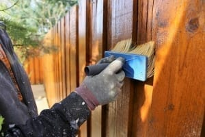 brush staining a fence