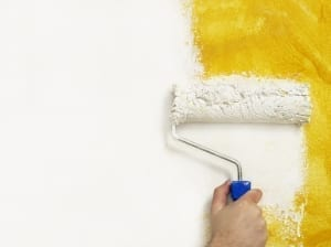 paint with primer - rolling wall