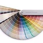 paint color book / fan