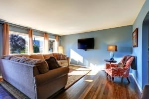Blue apartment living room