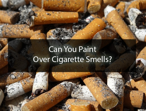 Can You Paint Over Cigarette Smells?